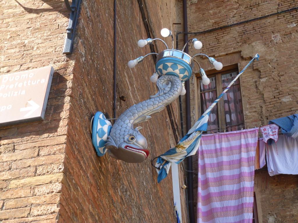 Siena adornada
