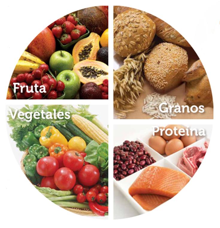 goya_nutrientes